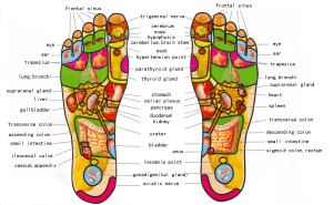 foot-reflexology